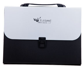 F8807 Elegant A4 Box File