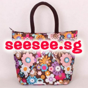 Colourful lunch bag / mini handbag NO.5