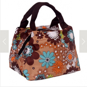 Assorted design Waterproof lunch bag