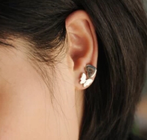 H124  Stylish Earrings